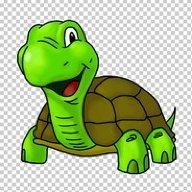 Dr. Turtle